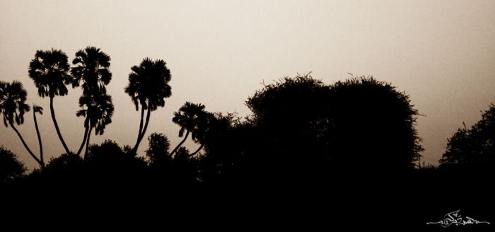 from-IMG_2059